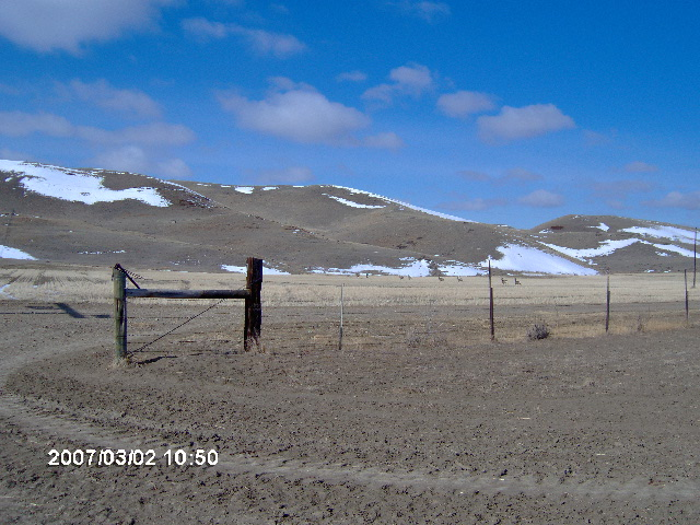 Sections of our private lands on the Wilson Ranch north of Malta Mt.