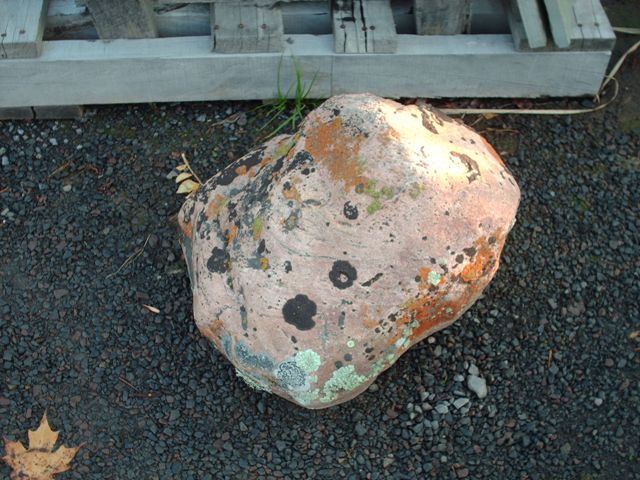 This Small Boulder  From Malta is Available in Fountainville Pa.