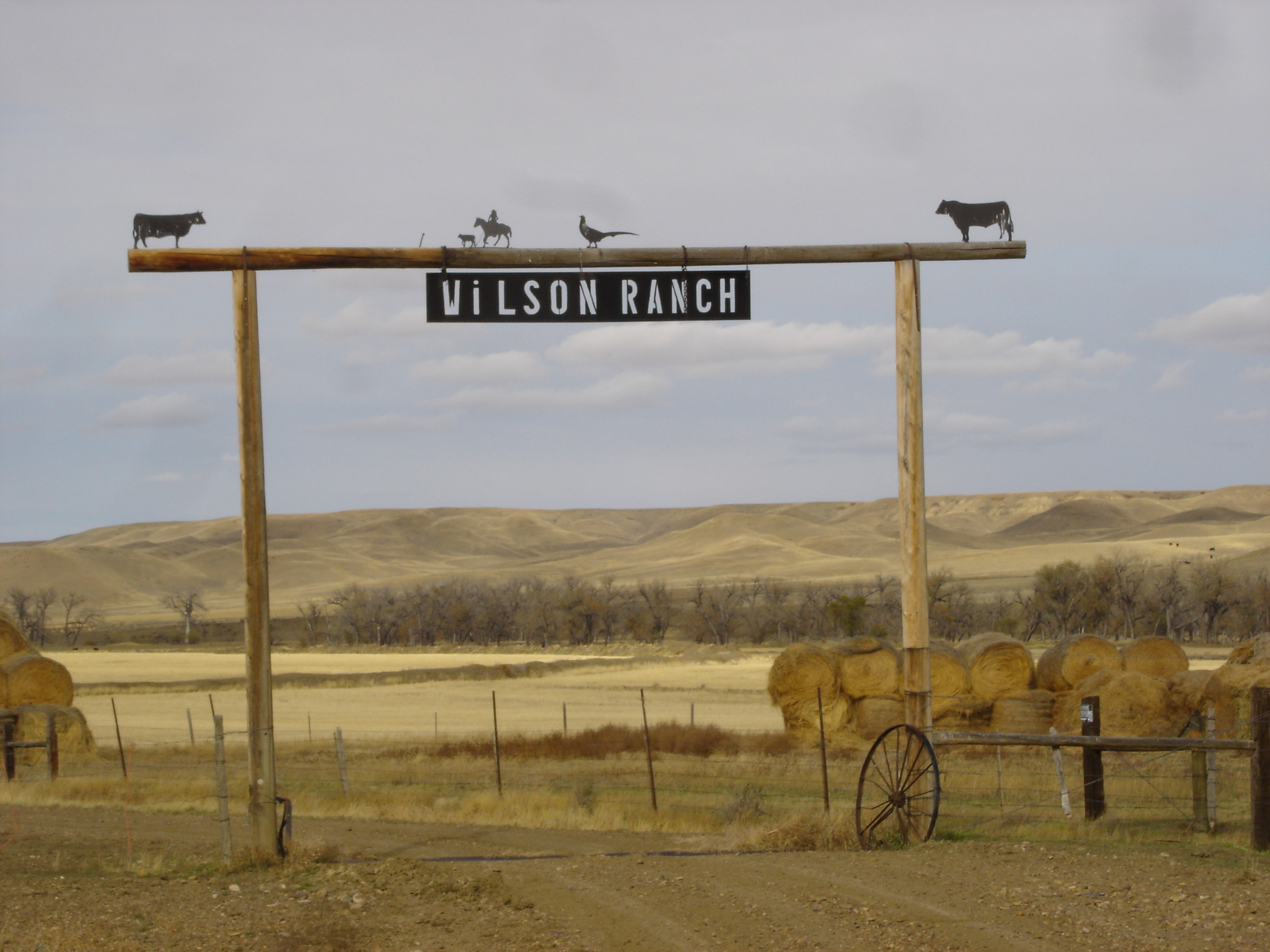 Wilson Ranch Entrance